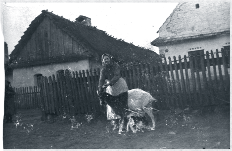 Hungarian peasant woman with goat in front of smallholder's farmhouse