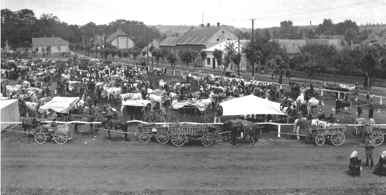 Market scene in downtown Marcali Hungary in 1928