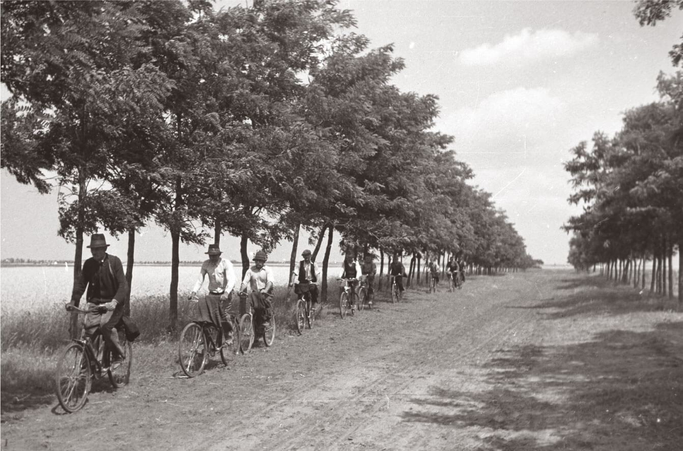 Agricultural workers biking on rural road in 1940s Hungary
